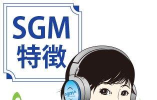 sgmの特徴